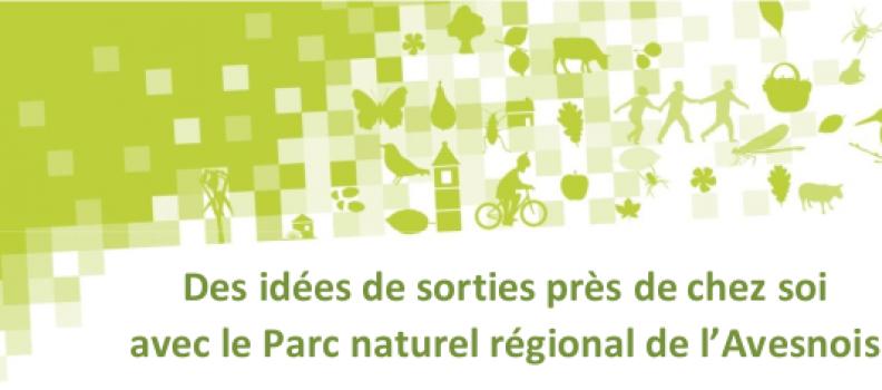 Sorties nature organisées par le Parc Naturel Régional